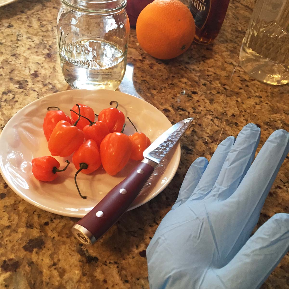 habanero plate with glove